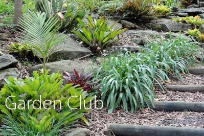 Open Gardens 2017 ~ 20th, 21st and 22nd October