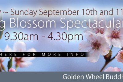 Galston District Garden Club presents the  Spring Blossom Spectacular
